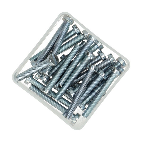 bout cilinderkop met sleuf m6x45mm 25pcs