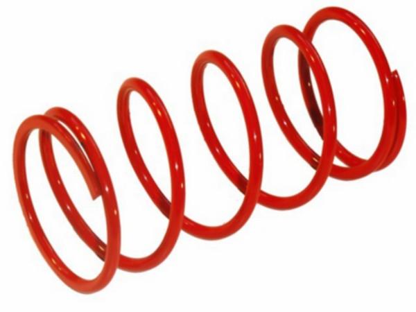 kopp.drukveer mad250/maj250 rood malossi 299976.r0